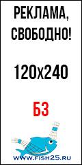 Б3-120х240