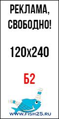 Б2-120х240