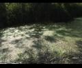 za-ydobrenie-reki-pridetsia-dorogo-zaplatit