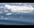 izmeneniia-klimata-povliiali-na-ylovy
